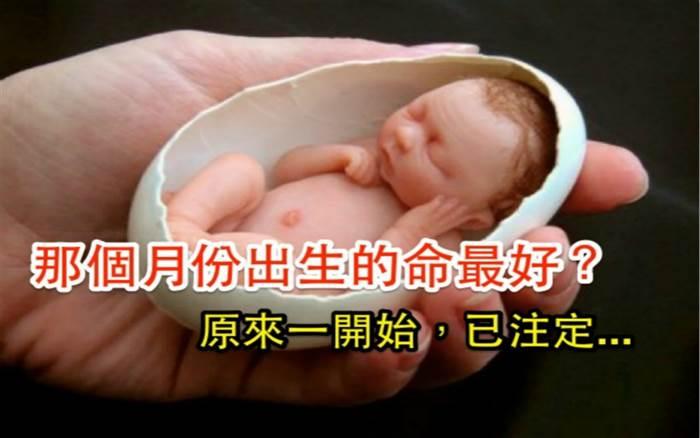 哪個月份出生的人命最好?原來一開始就已經注定!